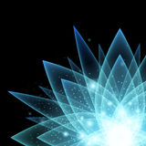Mystical glowing flower background. Right corner composition. Shine and sparkles on black back Stock Image