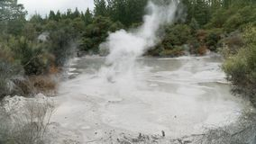 Mystical hot mud pools near Rotorua, New Zealand. Visiting of mystical geothermal mud pools near Rotorua, New Zealand royalty free stock photo