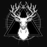 Mystical image of the head of a horned deer, sacred geometry, symbols of the moon. White drawing isolated on a black background. Vector illustration. Print Stock Photo
