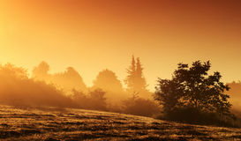 Mystical landscape at sunrise Stock Image