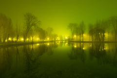Mystical landscape with trees near the pond in misty autumn even. Ing Stock Photos