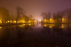 Mystical landscape with trees near the pond in misty autumn even. Ing Royalty Free Stock Images
