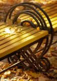Upon mystical light dawn. Yellow bench  in the gardens Royalty Free Stock Photography