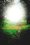 Mystical light Royalty Free Stock Photo