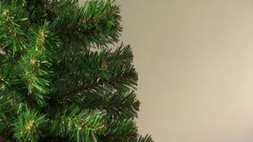 Mystical light falls on a Christmas tree stock video