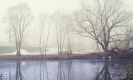 Mystical morning mist over the river Royalty Free Stock Photo