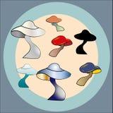 Mystical mushrooms vector vector illustration