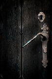 Mystical old door Royalty Free Stock Images