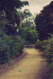Mystical park. Footpath in mystical evening park Royalty Free Stock Images