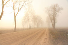 Mystical road in fog Stock Image