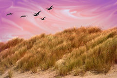 Mystical Sand Dune Stock Image