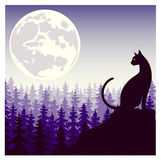 Mystical silhouette of a cat against the background of the moon Royalty Free Stock Photo