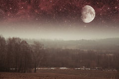 Mystical spring night. Stock Images