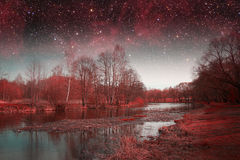 Mystical spring night. Royalty Free Stock Image