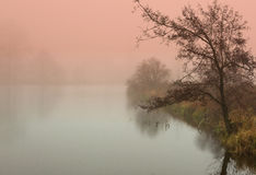 Mystical sunrise in autumn by the pond royalty free stock photography