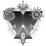 Mystical symbols of origin of life: shell, radiolaria, larva. sacred geometry. Alchemy, magic, esoterics, occultism. Vector illustration isolated on a white Royalty Free Stock Image
