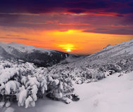 Mystical winter evening in mountains Royalty Free Stock Photography