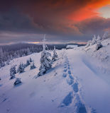 Mystical winter sunset in mountains Royalty Free Stock Image
