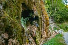 Mystically atmosferische waterval met groene mos en rotsen stock afbeelding