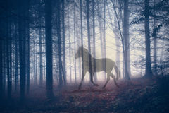 Mysticus abstract paard in het bos Royalty-vrije Stock Foto