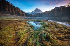Mysticuslandschap met gekleurd de herfstgras en houten brug bij royalty-vrije stock afbeelding
