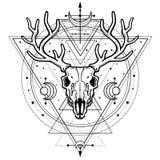 Mystiek beeld van de schedel een gehoornd hert, heilige meetkunde, symbolen van de maan vector illustratie