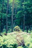 Mystiek meisje in donker hout Royalty-vrije Stock Foto's