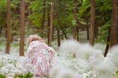 Mystiek meisje in hout Royalty-vrije Stock Fotografie