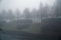 Mystieke Gangweg met mistsilhouet van bomen, nevelige walkside, mistige plaats royalty-vrije stock afbeelding