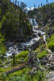 Mystiker faller den Yellowstone nationalparken Arkivbilder