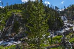 Mystiker faller den Yellowstone nationalparken Royaltyfri Bild