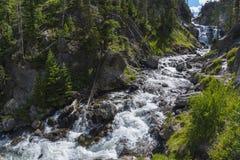 Mystiker faller den Yellowstone nationalparken Arkivfoton