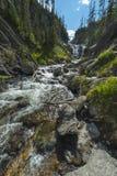 Mystiker faller den Yellowstone nationalparken Arkivfoto