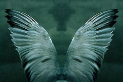 Mystische Flügel Stockfoto
