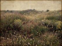 Mystische Landschaft durch die Küste von Süd-Frankreich lizenzfreie stockfotografie