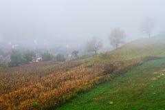 Mystische nebelige Landschaft Stockfotos