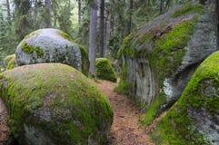 Mystische Steine im Waldviertel Stockfotos