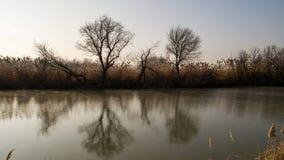 Mystischer Fluss Lizenzfreies Stockbild