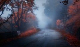 Mystischer Herbstwald mit Straße im Nebel lizenzfreie stockfotos