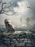 Mystischer Hintergrund Halloweens mit Eule auf der Steinwand Lizenzfreie Stockbilder