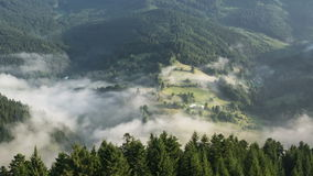 Mystischer nebeliger Morgen über Nebel-Wolken über Bäumen Forest Countryside Time Lapse stock video