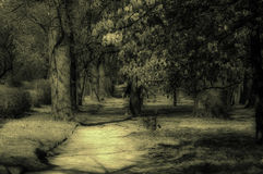 Mystischer Park Stockfotografie