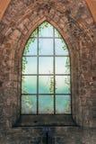 Mystisches mittelalterliches Kirchenfenster mit wachsenden Anlagen auf der anderen Seite in Orval-Abtei lizenzfreies stockbild