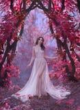 Mystisk attraktiv dam i en lång ljus lyxig klänning i en magisk rosa skog, port till sagavärlden som är gullig royaltyfria foton