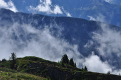 Mystisk berginställning Morgonmister och sörjer trän Royaltyfria Bilder