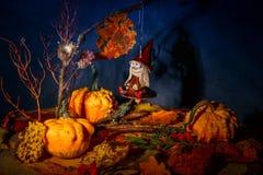 Mystisk bra häxa på en kvast i en felik natthöstskog med pumpor, hänge för docka för halloween häxaleksak Arkivbild