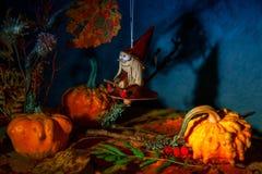 Mystisk bra häxa på en kvast i en felik natthöstskog med pumpor, hänge för docka för halloween häxaleksak Royaltyfria Bilder