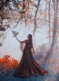 Mystisk dam i den ursnygga burgundy röda lyxiga klänningen och lockiga ställningar för mörkt hår i den tjocka dimmiga skogen, dro arkivbild