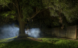 mystisk dimma Arkivbild