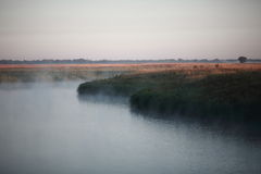Mystisk dimmig morgon på sjön Royaltyfri Bild